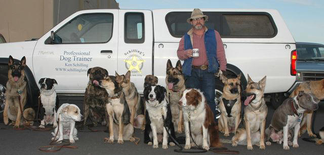 Schilling S Northwest Law Dogs